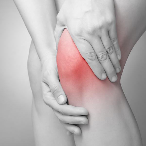 Featured Body Part: Knee