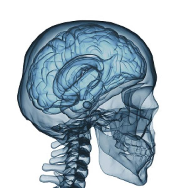Brain Injuries Do Not Discriminate