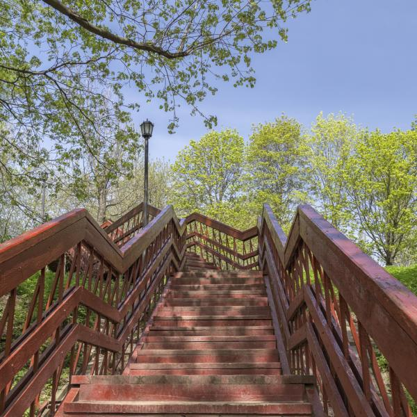 Out of Breath After Climbing the Stairs? Here's Why