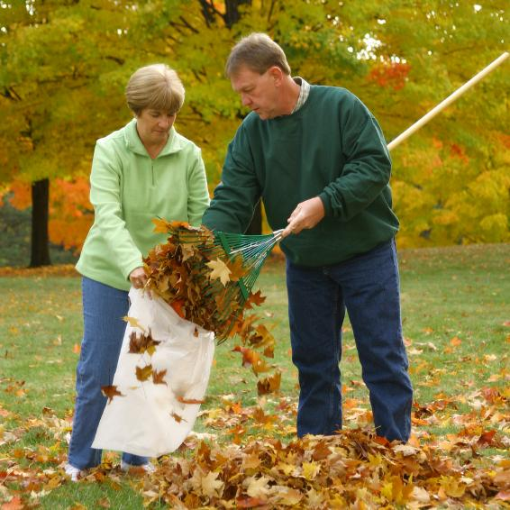 Autumn Clean-Up Tips