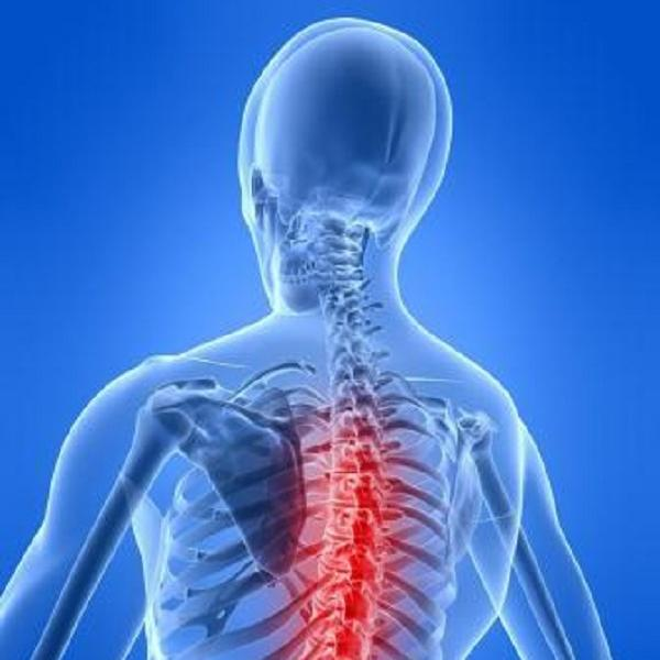 Treatment for Back Pain Should Include Physical Therapy
