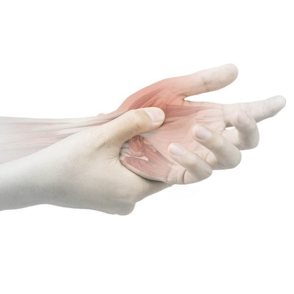 An Inside Look Into Flexor Tendon Injuries